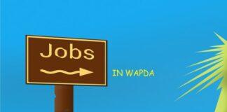 Jobs in Wapda