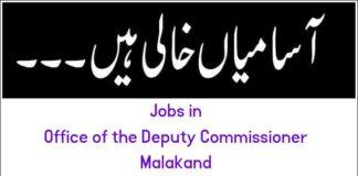 Jobs in Establishment Department Khyber Pakhtunkhwa