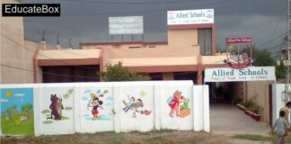 Jobs in Allied School Gulshan e Ahbab Campus Lahore