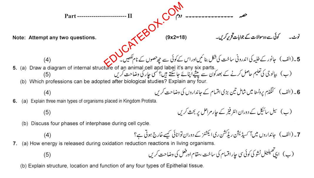 Model Paper of 9th Class Computer Science 2015-17 - Subjective Type Paper - Page 2