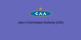 Jobs in Civil Aviation Authority (CAA)