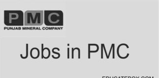 Jobs in Punjab Mineral Company (PMC) Private Limited - Featured