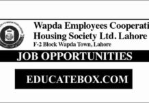 Jobs in Wapda Employees Cooperative Housing Society