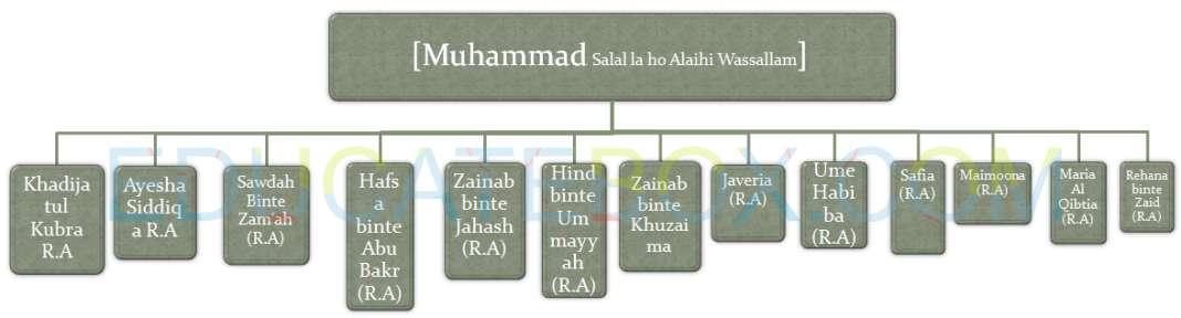 Wives of Prophet Muhammad Sallallahu alaihi wasallam