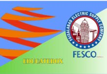 Wapda Fesco Bill Online Check