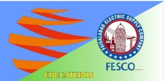 Wapda Fesco Bill Online Check